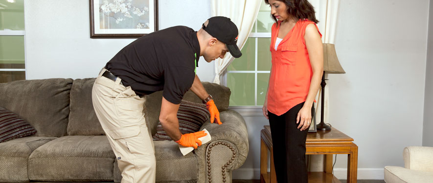 Chandler, AZ carpet upholstery cleaning