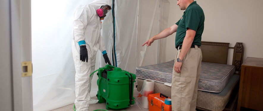 Chandler, AZ mold removal process
